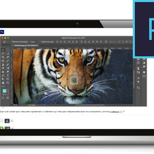 La Certification TOSA Photoshop est disponible !