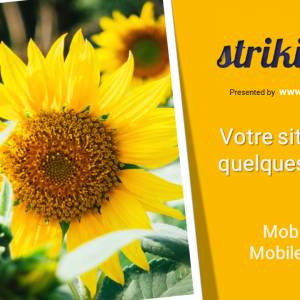 Formation e-learning « créer un site web avec Strikingly »