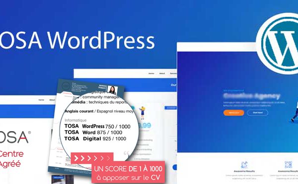 Nouveau ! Formation & Certification TOSA WordPress à distance disponible!